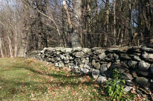 Rock Fence near Guilford, Vermont